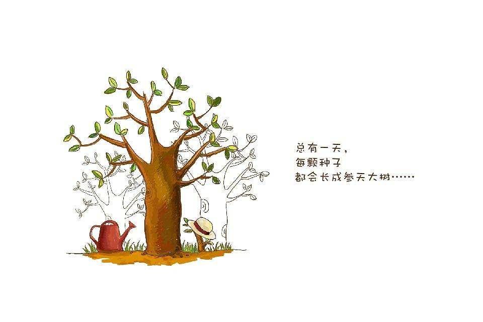 种子与大树.jpg