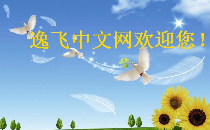 逸飞中文.jpg
