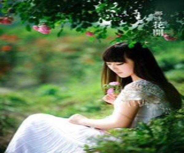 蔷薇花开,一世情缘(小说)