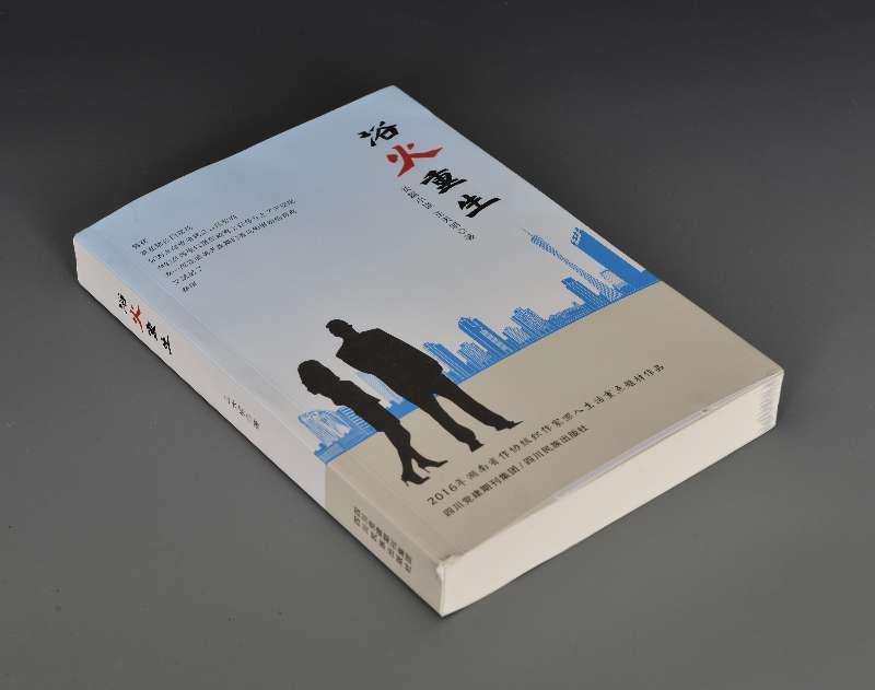 王天明长篇小说《浴火重生》一部时代生活的暖色调