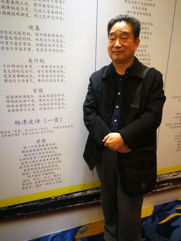 逸飞签约作家杨清波